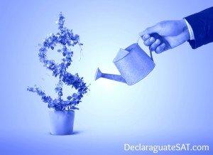 Solvencia Fiscal de Declaraguate